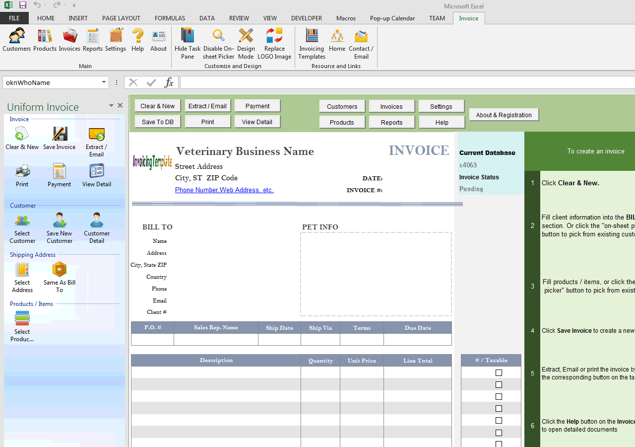 Veterinary Invoice Template - Fake invoice maker for service business